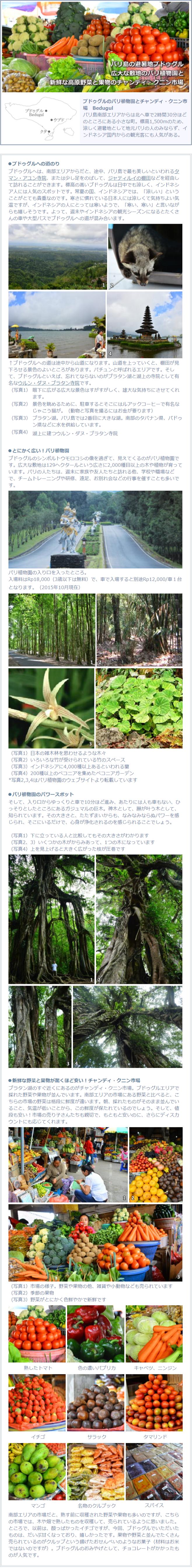 ブドゥグルのバリ植物園とチャンディ・クニン市場の説明