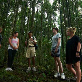 熱帯雨林をトレッキングスタート