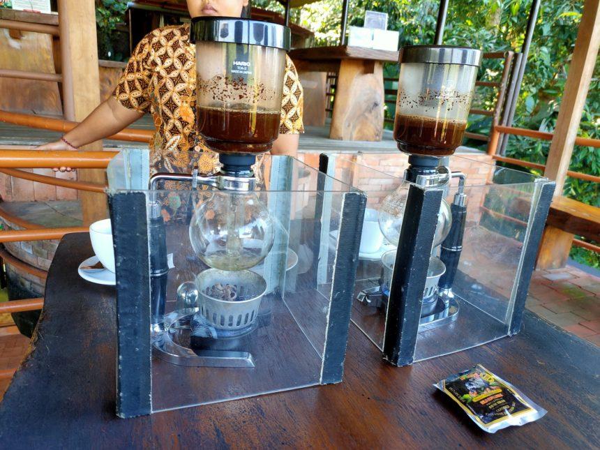 コーヒー農園でのルアクコーヒー