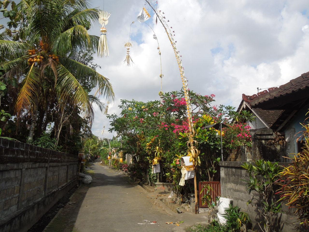 ペンジョールが飾られた家々