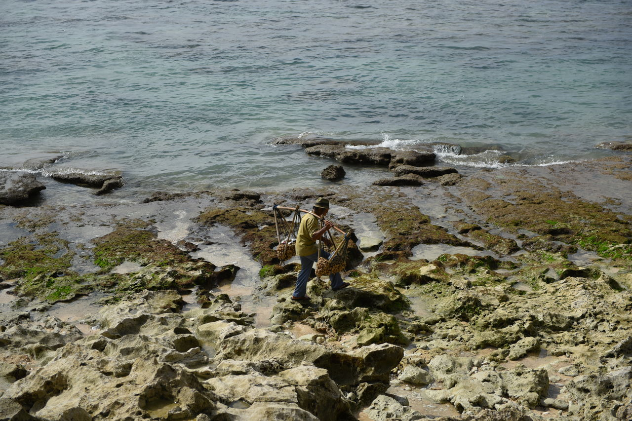 ビンギンビーチの売り子