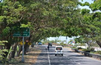 バリ島の道路2